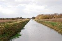 [The canal between Ham Wall and Shapwick Heath reserves, Somerset Levels]