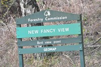 [new fancy view point2]