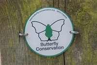 [butterfly conservation]